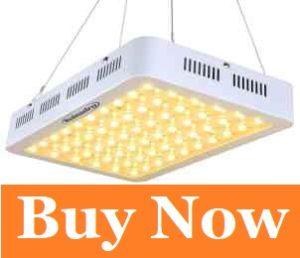 led grow light bulbs review