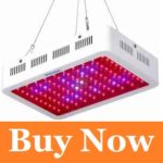 best led grow lights for cannabis