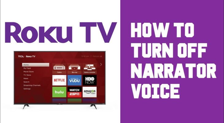 how to turn off roku voice